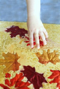 Fall Sensory Play for Toddlers from Fun at Home with Kids