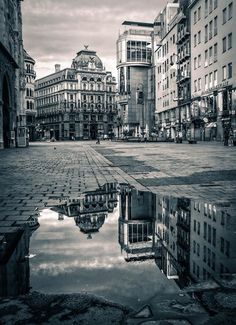Black and white puddle