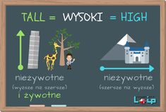 TALL czy HIGH? - Loip Angielski Online English Grammar Tenses, English Idioms, English Phrases, English Lessons, English Vocabulary, Learn English, English Language, English Teaching Resources, Education English