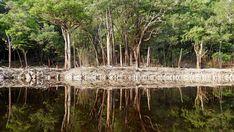 Faszinierende Spiegelungen auf der glatten Wasseroberfläche, unberührte Natur & unerschlossene Weite. Nur das Zirpen der Zikaden, das Gequake von Fröschen & der Gesang der Vögel begleiteten uns (2017)