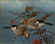 """Jays"" - ""Närhiä"", 1877 – oil on canvas – Ferdinand von Wright - Ateneumin taidemuseo Counted Cross Stitch Patterns, Cross Stitch Designs, Intermediate Colors, Cross Stitch Supplies, Ferdinand, Western Art, First Photo, Art World, Pet Birds"