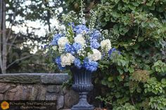 The cremony arrangements created in verdi gris urns using blue and white hydrangea, hybrid delphinium and white monte casino.