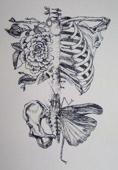 tattoo – Seele der Wissenschaft. Daniel Martin Diaz anatomisches Herz und Schädel Heilige Geometrie vol 14547 | Fashion & Bilder