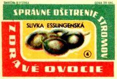 Bohemian-Graphics-Czech-Design-17-Tres-Bohemes