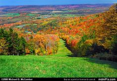 Canaan Valley.  One of my favorite spots :)