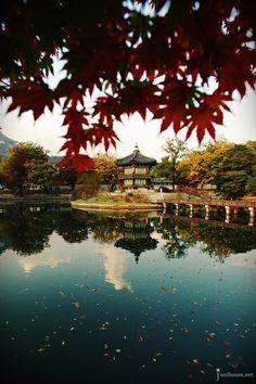 Autumn Gyeongbokgung palace, Seoul, Korea Art Print by junibaum - X-Small Travel Around The World, Around The Worlds, Korea Wallpaper, Beautiful Places, Beautiful Pictures, South Korea Travel, Kirchen, World Cultures, Travel Inspiration