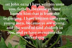 62_1JO_02_14 I have written unto you, fathers, because ye have known him [that is] from the beginning. I have written unto you, young men, because ye are strong, and the word of God abideth in you, and ye have overcome the wicked one.                     www.eBibleProductions.com