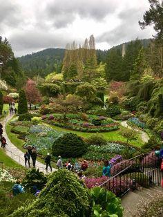 Butchart Gardens Victoria BC. Botanical Gardens in British Columbia Canada.