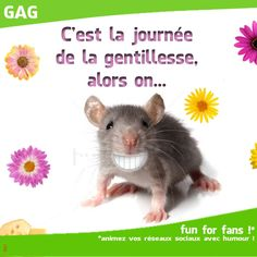 JOURNEE DE LA GENTILLESSE