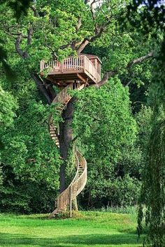 Tree house anyone? View tree houses of different shapes and sizes in this albu… Tree house anyone? View tree houses of different shapes and sizes in this album here: theownerbuilderne… Is building a tree house on your backyard project list?