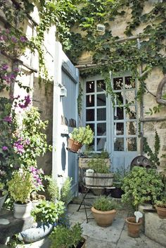 Small Courtyard Gardens, Small Courtyards, Small Gardens, Outdoor Gardens, Balcony Gardening, Vertical Garden Wall, Vertical Gardens, Pot Plante, Garden Cottage