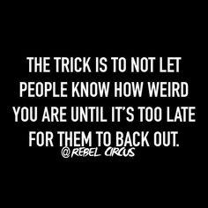 Rebel circus funny