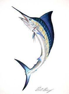 Saltwater Fish Art   saltwater fish prints saltwater fish prints - Saltwater Fish Paintings ...