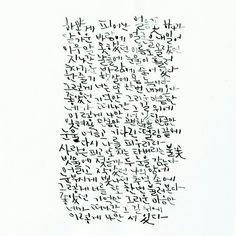 박효신, 야생화 1/2 전문