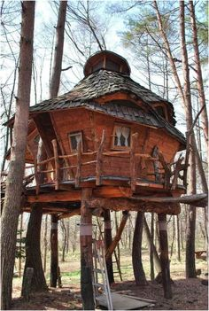 How To Build A Treehouse ? This Tree House Design Ideas For Adult and Kids, Simple and easy. can also be used as a place (to live in), Amazing Tiny treehouse kids, Architecture Modern Luxury treehouse interior cozy Backyard Small treehouse masters Nagano Japan, Cool Tree Houses, Tree House Designs, Unusual Homes, In The Tree, Little Houses, Small Houses, Play Houses, Dream Houses