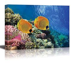 Wall26 - Canvas Prints Wall Art - Coral Reef and Tropical... https://www.amazon.com/dp/B00Y7QW65A/ref=cm_sw_r_pi_dp_x_K.skybQ4D563E