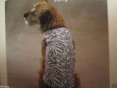 Dog Shirt  Zebra Print East Side Collection  Blue and Brown  New with Tags #eastsidecollection
