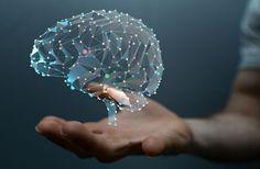 دوره آموزشی مبانی علوم اعصاب، دانش مغز و آشنایی با روشهای تحقیقاتی (دوره بیست و یکم) - نوروسافاری | دانش مغز و علوم اعصاب