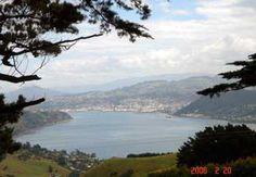 Dating Sites i Dunedin NZ reglene for dating en yngre mann