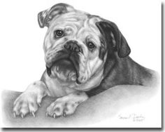 shading in art - Google Search