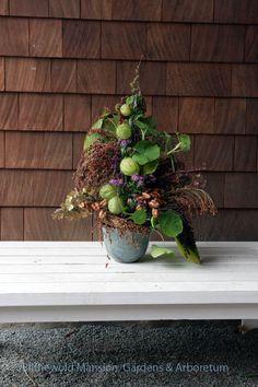 A woven arrangement of Gomphocarpus physocarpus (hairy balls), nasturtium, and broom corn