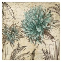 Blue Botanical I Fine-Art Print by Aimee Wilson at UrbanLoftArt.com