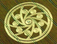 Farmers Stand In Center Of Crop Circle