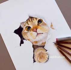 Beautiful Drawing by Sallyann