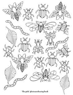 coloriage insectes Plus Vintage Embroidery, Embroidery Patterns, Hand Embroidery, Embroidery Sampler, Blackwork Embroidery, Embroidery Stitches, Bug Art, Insect Art, Bugs And Insects