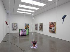 Parker Ito Artist Exhibition Installation View With Parrots White Cube London