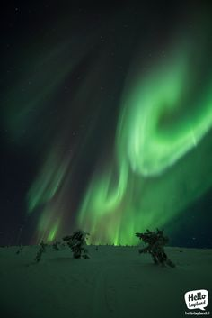 The most powerful Auroras of the season yet. 8.12.2013 in Levi, Lapland, Finland.