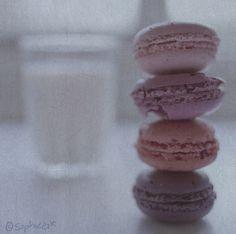 #macarons #lilac
