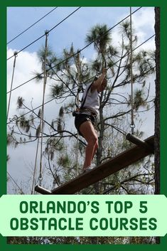 Florida is home to all types of adventures, but if climbing over walls and swinging on ropes get your adrenaline pumping, an obstacle course might be for you.