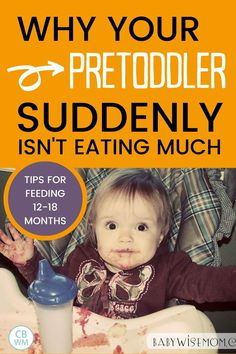 Are you worried about how much your pretoddler (12-18 month old) is eating (or NOT eating)? Read this for tips and assurance. Find out why your pretoddler is not eating much anymore. Toddler Stuff, Toddler Meals, Toddler Activities, Teaching Babies, Baby Feeding Schedule, Toddler Playroom, Solids For Baby, Thing 1, Mummy Bloggers