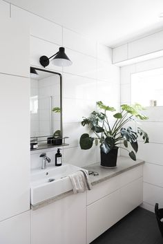 Ideas para decorar tu baño con plantas | Deco con Sailo - Blog de decoración, DIY, diseño, un montón de ideas low cost para decorar tu casa