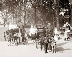 America's Gilded Age - Teenage boys wearing working uniforms while operating goat carts. Well dressed children are taking a pleasant ride in the goat carts. Located in Central Park, NYC - c.1900. ~ {cwlyons}