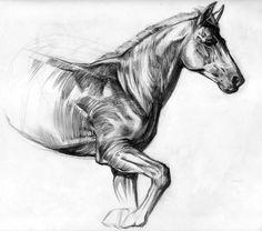 Horse sketch by sabbathsoul