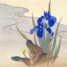 Flowers & Rising Sun -Hoitsu