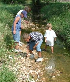 Gold Prospectors in Creek at Lakeview Farms in St. Peters- May and June