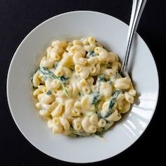 Healthy Dinner Recipes for Beginners: Creamy Greek Yogurt Mac and Cheese by Cooking ala Mel Skinny Recipes, Healthy Dinner Recipes, Cooking Recipes, Skinny Meals, Low Fat Pasta Recipes, Healthy Meals, Cooking Fish, Skinny Mom, Cooking Bacon