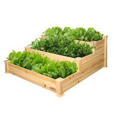 Walmart has theExpert Gardener 3-Tier Wood Garden Bed, 4 ft L x 4 ft W x 22 in H marked down from $70 to $40 with free shipping. Details: Level up your gardening this season with a Expert Gardener 3-tier garden bed. Crafted with an open bottom on each level, it easily allows room for…