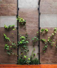 garden green screen