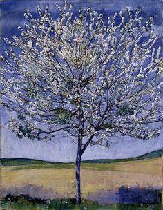 Cherry Blossom Tree. Ferdinand Hodler 1905