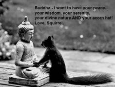 Squirrely prayers