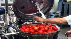 Lazio, formazione gratuita per le pmi del settore alimentare