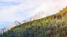 Wallpaper: http://desktoppapers.co/nm29-wood-nature-mountain-blue-green-summer-flare/ via http://DesktopPapers.co : nm29-wood-nature-mountain-blue-green-summer-flare