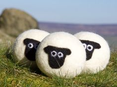 Suffolk sheep wool dryer balls - My wool dryer balls, draw on wool's natural absorbency to help the clothes to dry quicker.