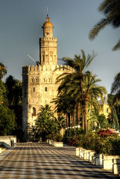 Torre del oro,  Sevilla, Spain ,we visited here in 89', best coffee, Paella, sherry, horses...