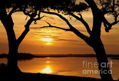 BEAUTIFUL FINE ARTWORKS for SERENITY AND TRANQUILITY  http://karen-wiles.artistwebsites.com