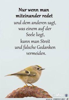 ein Bild für's Herz 'Nur wenn man miteinander redet.jpg' von WienerWalzer. Eine von 138 Dateien in der Kategorie 'Lebensweisheiten' auf FUNPOT.